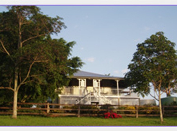 Blue Ridge Lavender Farm and Retreat - Sydney Tourism