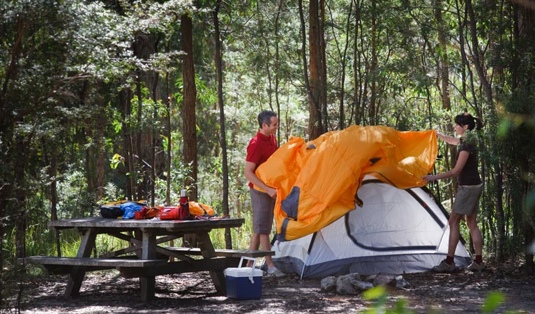 Bald Rock campground and picnic area - Sydney Tourism