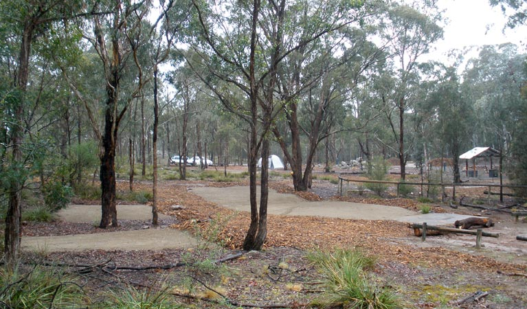 Bungonia Campground - Sydney Tourism
