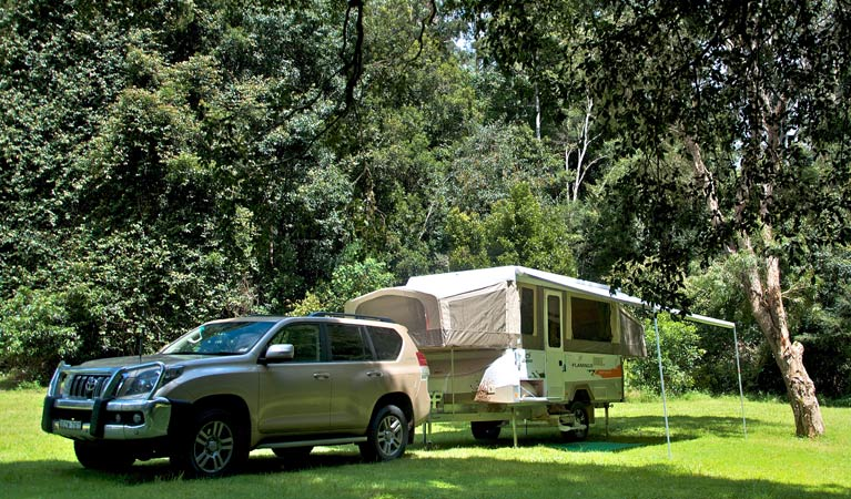 Gloucester River campground - Sydney Tourism