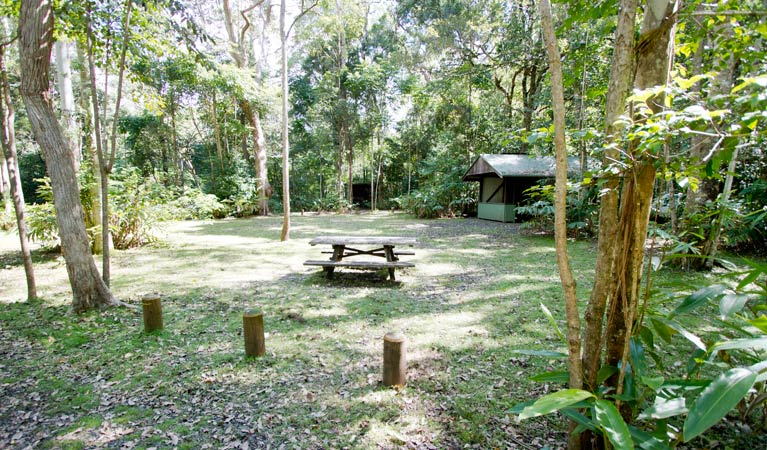 Iron Pot Creek campground - Sydney Tourism
