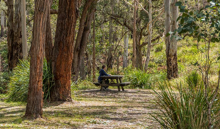 Koreelah Creek campground - Sydney Tourism