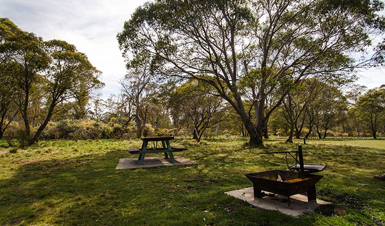 Little Murray campground - Sydney Tourism