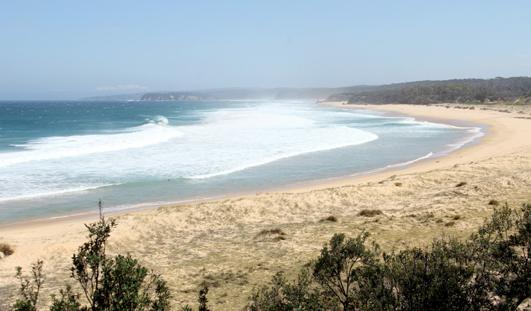 Middle Beach campground - Sydney Tourism