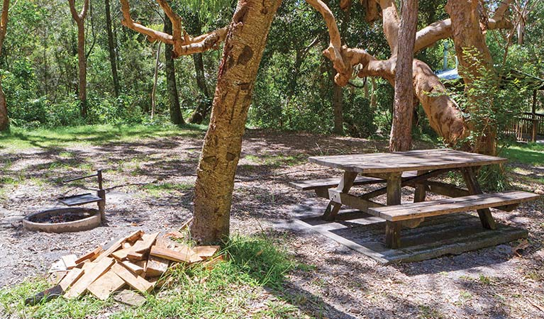Station Creek campground - Sydney Tourism
