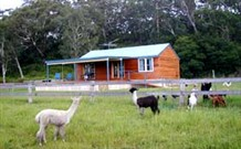 Moorallie Cottage Farm Stay - Sydney Tourism