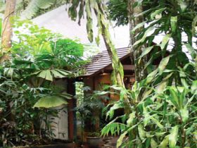 Heritage Lodge and Spa - In the Daintree - Sydney Tourism