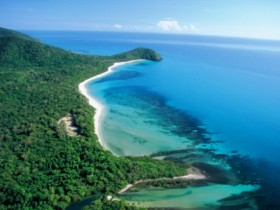 Cape Tribulation Camping - Sydney Tourism