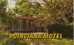 Poinciana Motel - Sydney Tourism