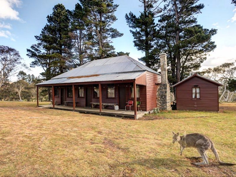 The Pines Cottage - Sydney Tourism