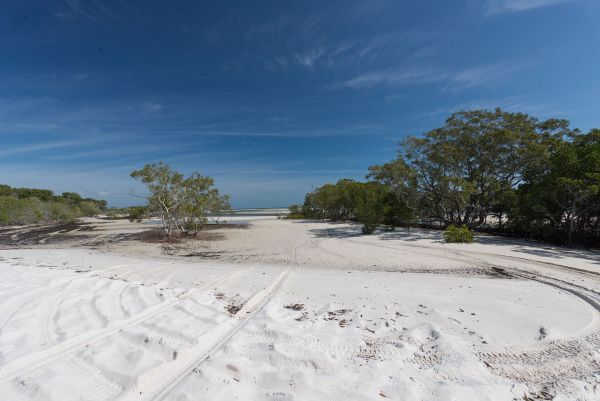 Fraser Island National Park Camping Ground - Sydney Tourism