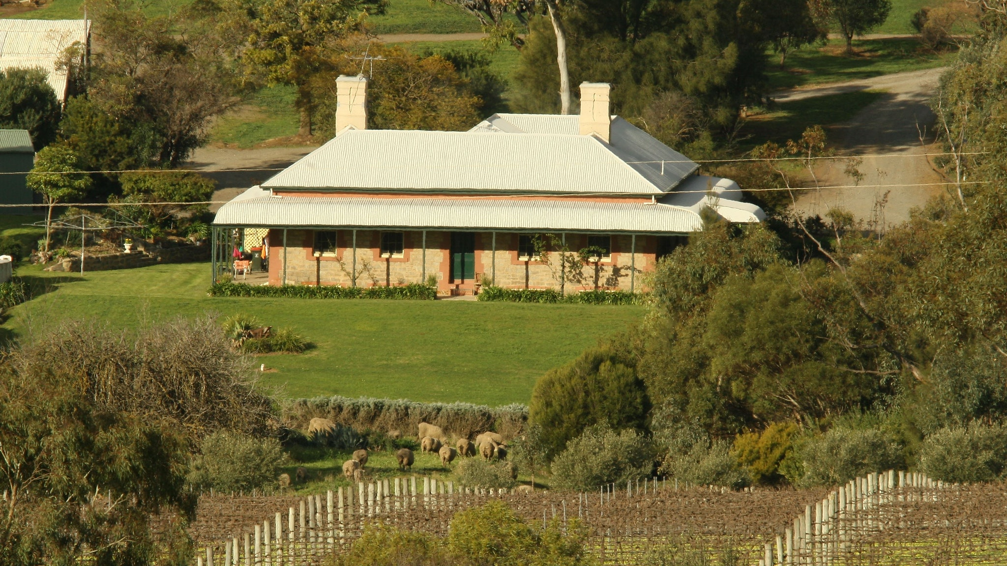 Oliver's White Hill Bed and Breakfast - Sydney Tourism