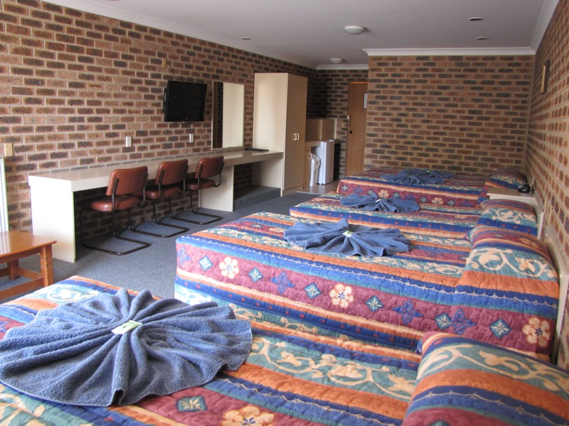 Big Trout Motor Inn - Sydney Tourism