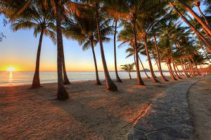 Palm Cove Holiday Park - Sydney Tourism