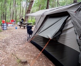 WA Wilderness Catered Camping at Big Brook Arboretum - Sydney Tourism