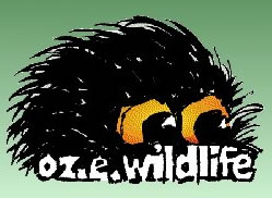OZe Wildlife - Sydney Tourism