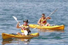 Manly Kayaks - Sydney Tourism