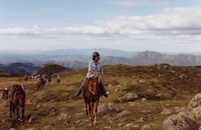 High Country Horses - Sydney Tourism