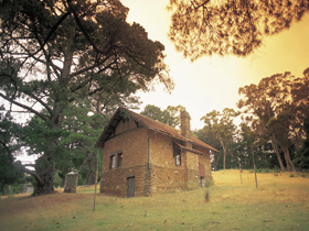 Heysen - The Cedars - Sydney Tourism
