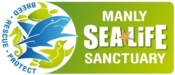 Manly SEA LIFE Sanctuary - Sydney Tourism