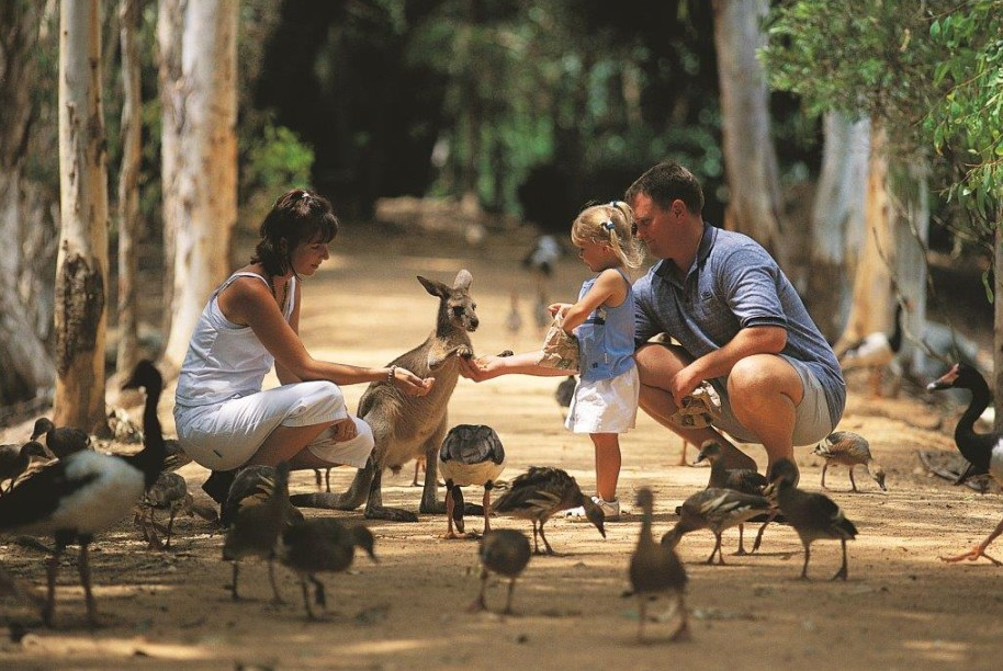 Billabong Sanctuary - Sydney Tourism
