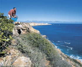 Cape Cuvier Coast - Sydney Tourism