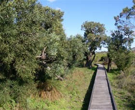 Kepwari Trails Wetland Wonderland - Sydney Tourism