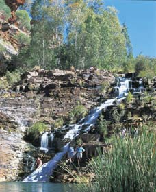 Fortescue Falls - Sydney Tourism