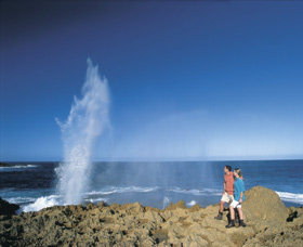 The Blowholes Carnarvon - Sydney Tourism