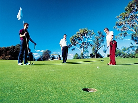 Mt Vista Golf Club - Sydney Tourism