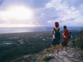 Mount Coolum National Park - Sydney Tourism