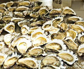 Wheelers Oysters - Sydney Tourism