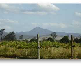 Ironbark Ridge Vineyard - Sydney Tourism