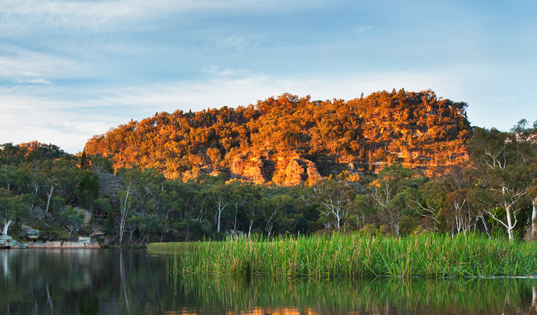 Wollemi National Park - Sydney Tourism