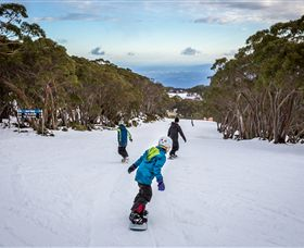 Mt Baw Baw Alpine Resort