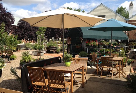 Mayfield Mews