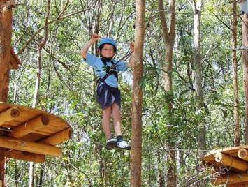 TreeTops Newcastle - Sydney Tourism