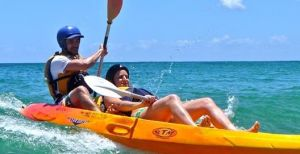 Go Sea Kayak - Sydney Tourism