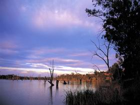 Loch Luna Game Reserve and Moorook Game Reserve - Sydney Tourism