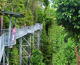 Mamu Tropical Skywalk - Sydney Tourism