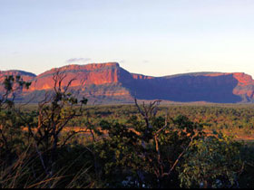 Blackdown Tableland National Park - Sydney Tourism