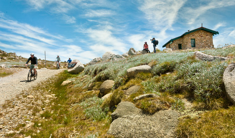 Mount Kosciuszko Summit walk - Sydney Tourism