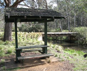 Barrington Tops State Forest - Sydney Tourism