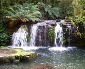 Barrington Tops National Park Walks - Sydney Tourism