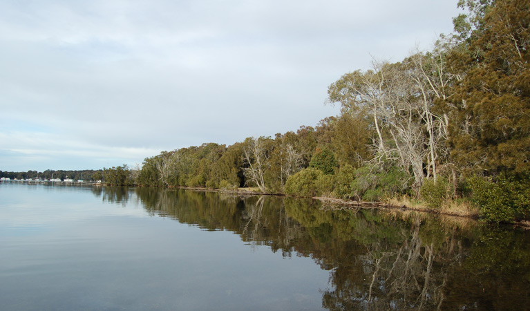 Lake Macquarie State Conservation Area - Sydney Tourism