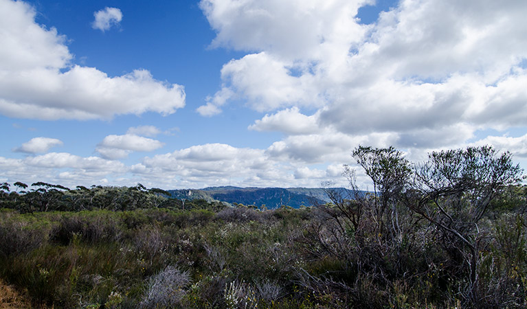 Barren Grounds Nature Reserve