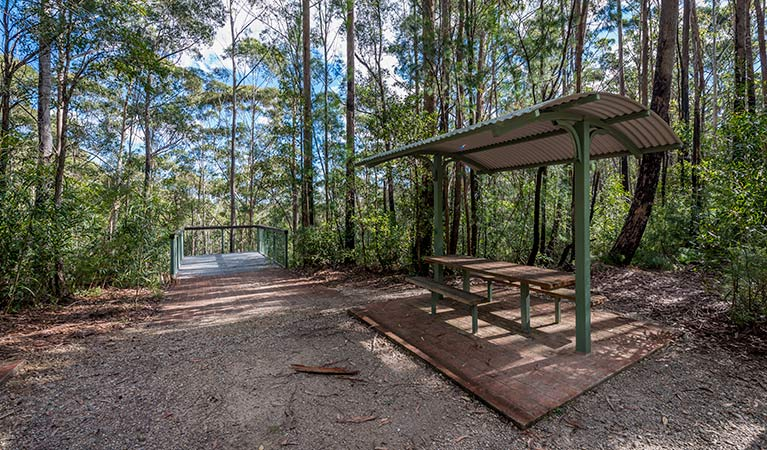 Big Nellie lookout and picnic area - Sydney Tourism