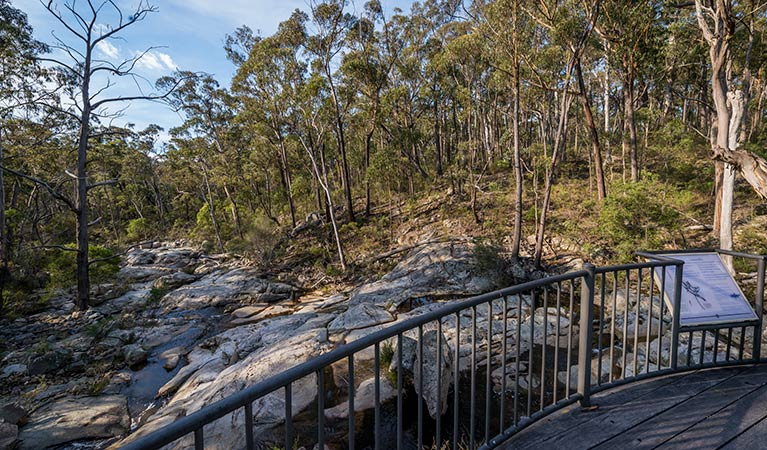 Myanba Gorge walking track - Sydney Tourism