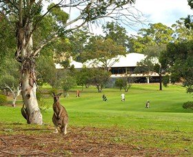 Pambula Merimbula Golf Club - Sydney Tourism