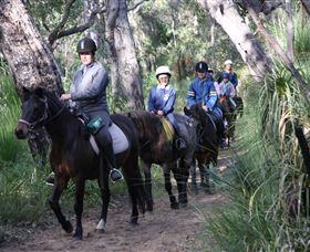 Mirravale Horse Riding School - Sydney Tourism